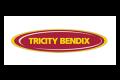 Трисити Бендикс